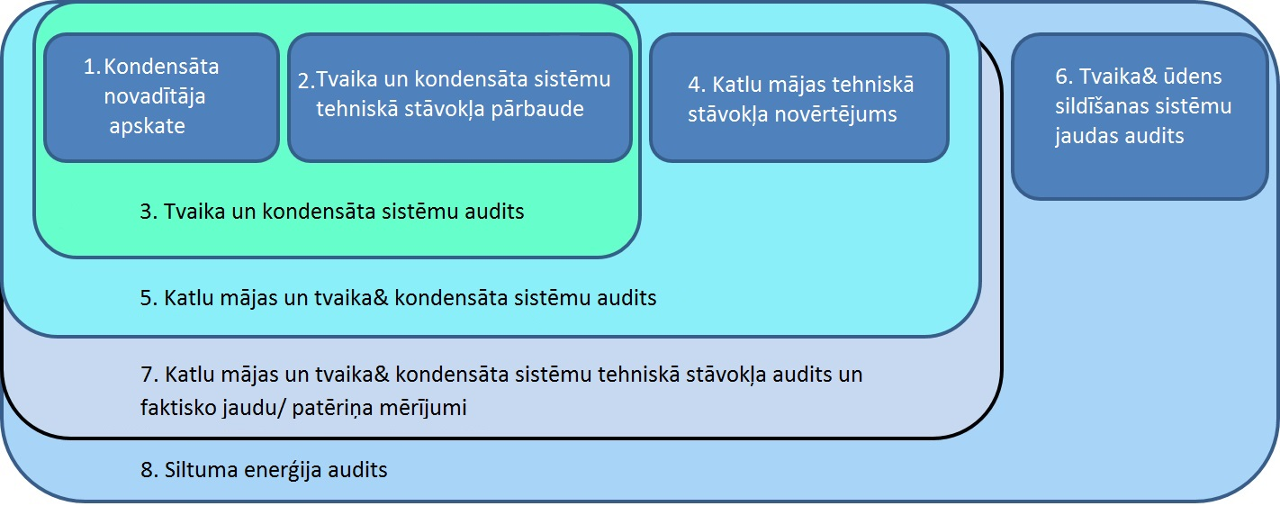 Steam and condensate system audit